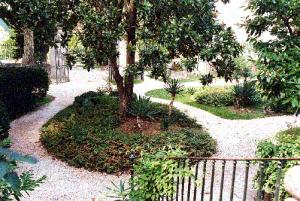 Le parc de la maison